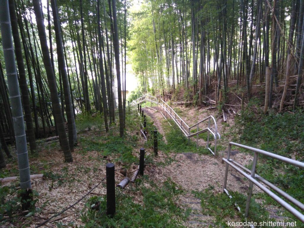 大塚・歳勝土遺跡公園 団地側の竹林