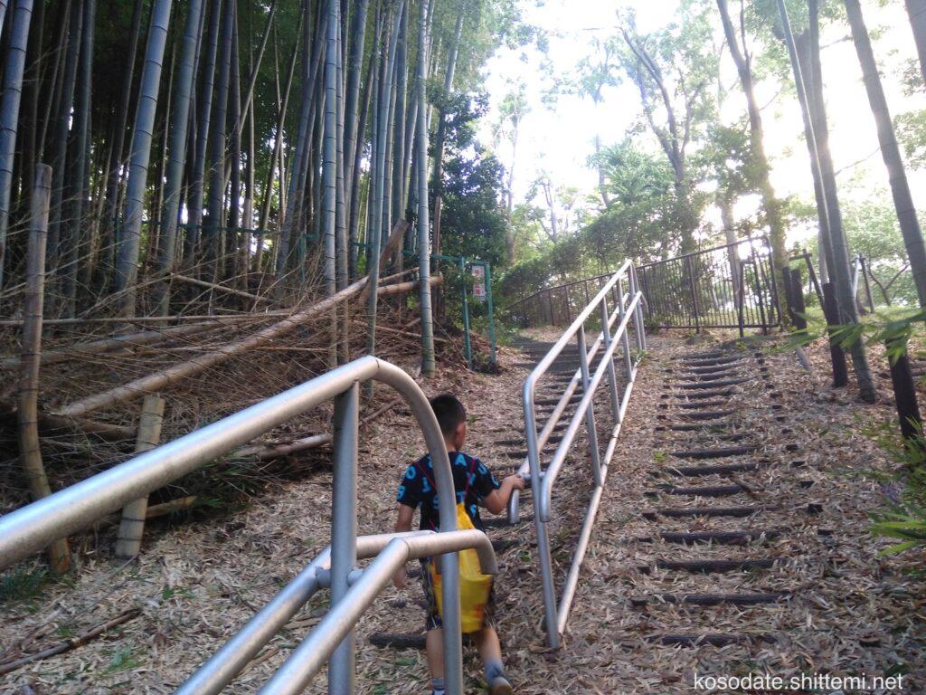 大塚・歳勝土遺跡公園 団地側の竹林の階段