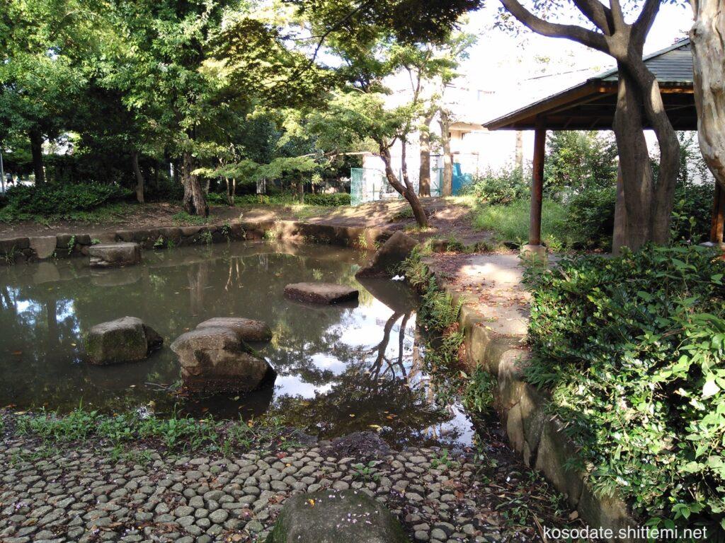 橘公園 水と緑の広場 池