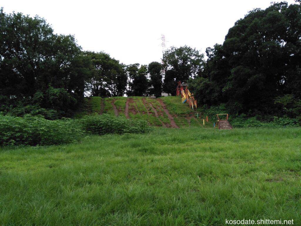 菅生緑地 斜面の遊具