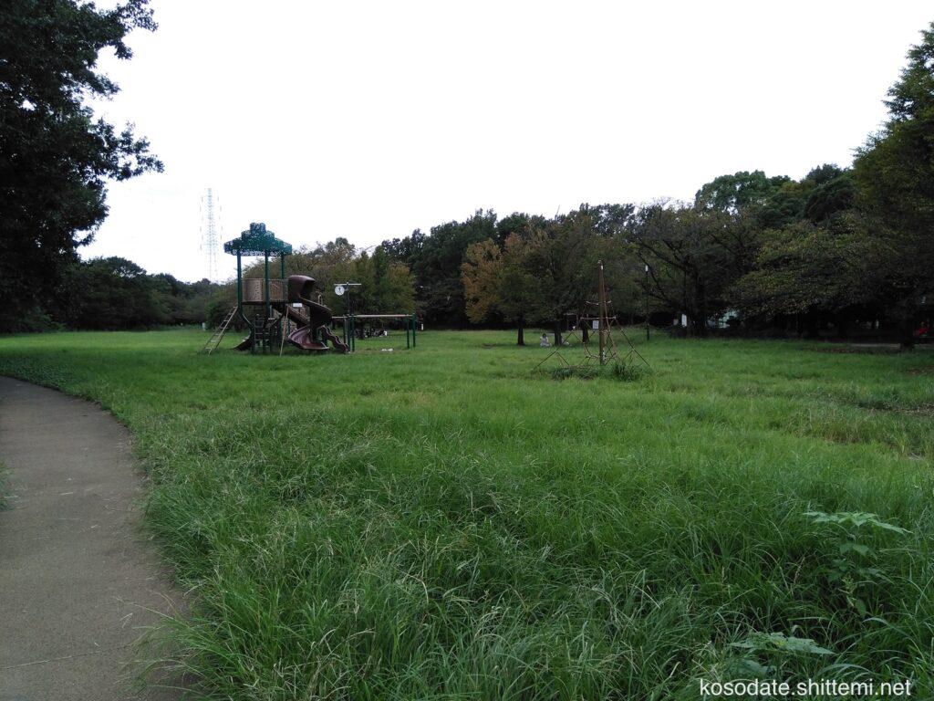 菅生緑地 複合遊具